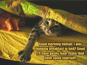 Good morning human. I was thinking breakfast in bed? Good, I'll have gushy food, thanx. And have some yourself!