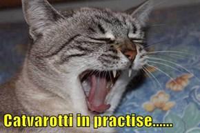 Catvarotti in practise......