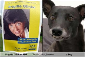 Brigitta Glinka - FDP Totally Looks Like a Dog