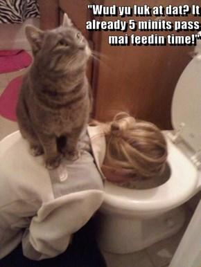 """""""Wud yu luk at dat? It                                                                       already 5 minits pass                                                                          mai feedin time!"""""""