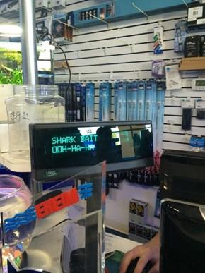 Aquarium Supplies With a Sense of Humor