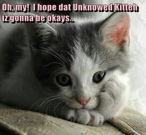 Oh, my!  I hope dat Unknowed Kitteh iz gonna be okays..
