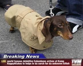 Breaking News - wurld famous detektive Columbone arrives at Kamp KuppykKakes to helps in da surch fur da unknown kitteh