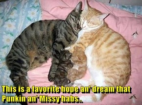 This is a favorite hope an' dream that Punkin an' Missy habs..