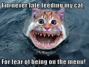 I'm never late feeding my cat,  For fear of being on the menu!