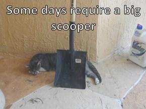 Some days require a big scooper