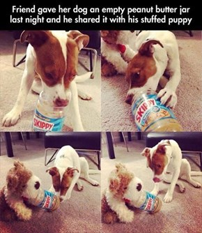 Share and Share Alike