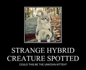 STRANGE HYBRID CREATURE SPOTTED