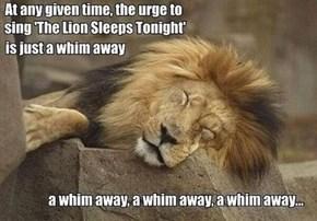 That Song Never Sleeps