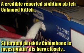 A credible reported sighting ob teh Unknoed Kitteh..  Silibrated detektiv Columbone is investigatin' dis bery closely..