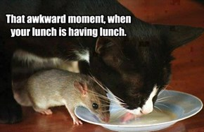 That awkward moment, when your lunch is having lunch.