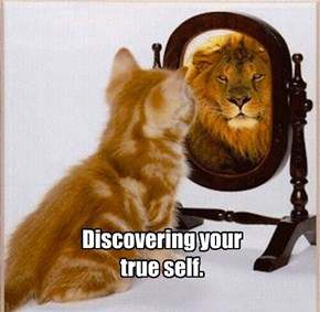 Discovering your  true self.