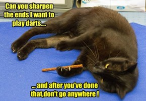 Can you sharpen the ends I want to play darts....