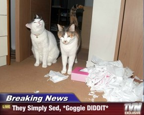 Breaking News - They Simply Sed, *Goggie DIDDIT*