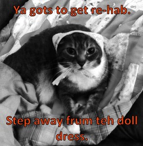 Ya gots to get re-hab.   Step away frum teh doll dress.