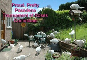 Proud, Pretty Pasadena Tournament of Roses Committee