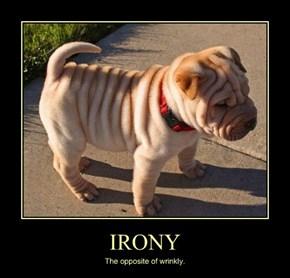 A Puppy Definition