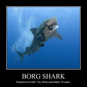 BORG SHARK