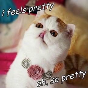 i feels pretty