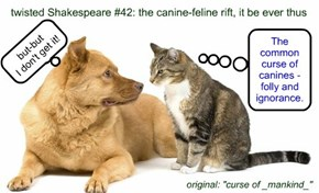 twisted Shakespeare #42: the canine-feline rift, it be ever thus