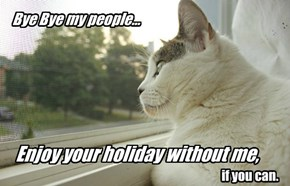 Why do people need holiday?