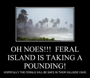 OH NOES!!!  FERAL ISLAND IS TAKING A POUNDING!