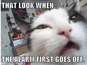 THAT LOOK WHEN...  THE ALARM FIRST GOES OFF.