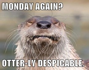 MONDAY AGAIN?  OTTER-LY DESPICABLE.