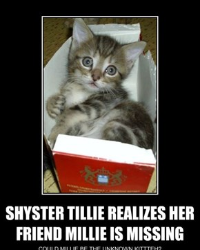 SHYSTER TILLIE REALIZES HER FRIEND MILLIE IS MISSING