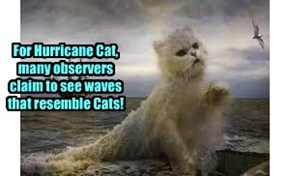 In an eerie freak of nature, Hurricane Cat (shorthand for Catherine) frequently displays waves of an unusual nature that puzzles scientists worldwide..