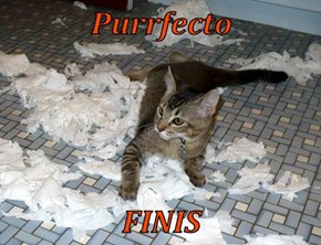 Purrfecto  FINIS