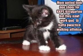 Mom gotted meh noo shooz for KKPS Kittygarten but they nawt work gud.  Ai hafta pwactice walking aifinkso.