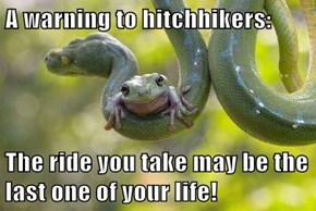 A warning to hitchhikers:  The ride you take may be the last one of your life!