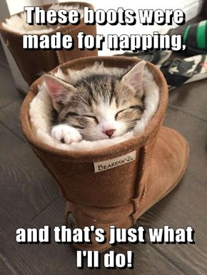 Why Else Would They be so Cozy?