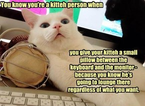 You know you're a kitteh person when