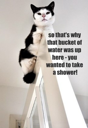 so that's why that bucket of water was up here - you wanted to take  a shower!
