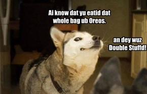 Your Dog Knows When to Keep a Secret