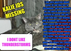 I am very worried about kalie. itf not like her to disappear. sje was outside on the porch and when it started to storm she hid. I cant find her I am hoping she is umder the trailer. she wont come out for treats or gushie fud. she is my giel and I vant fi