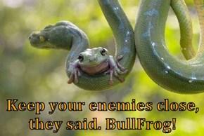 Keep your enemies close, they said. BullFrog!