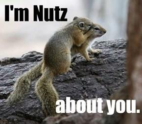 Nutz to You