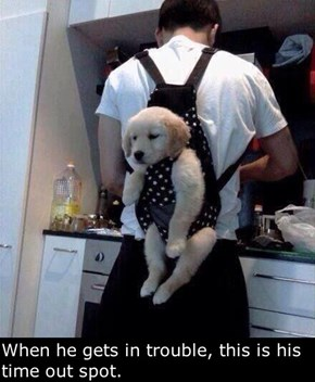 Another Use For That Baby Carrier