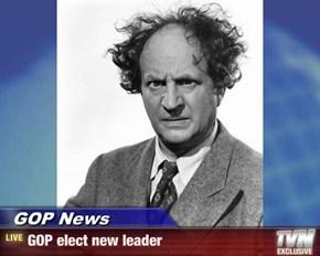 GOP News - GOP elect new leader