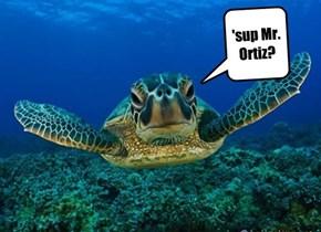 'sup Mr. Ortiz?