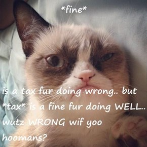 *fine*  is a tax fur doing wrong.. but *tax* is a fine fur doing WELL.. wutz WRONG wif yoo hoomans?