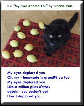 """""""Lemons Are Not Noms"""" (TTO """"My Eyes Adored You"""" by Frankie Valli)"""