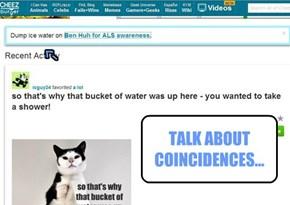 TALK ABOUT COINCIDENCES...