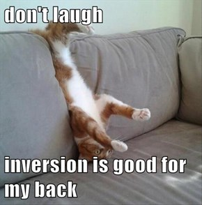 don't laugh  inversion is good for my back