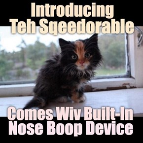 For Those Bery Extra Special Kitteh Lubz