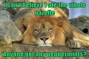 I can't believe I ate the whole gazelle  Anyone got any peppermints?