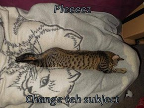 Pleeeez  Change teh subject